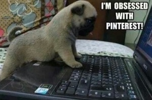 So true! And a Pug, too!